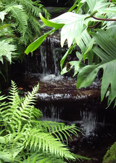 Waterfall_2